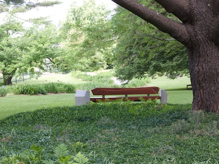 back view of bench 4 at berkshire botanical garden